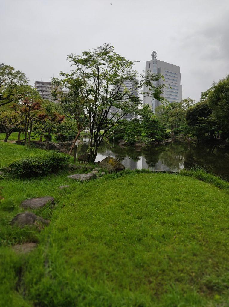 隅田公園内の池。