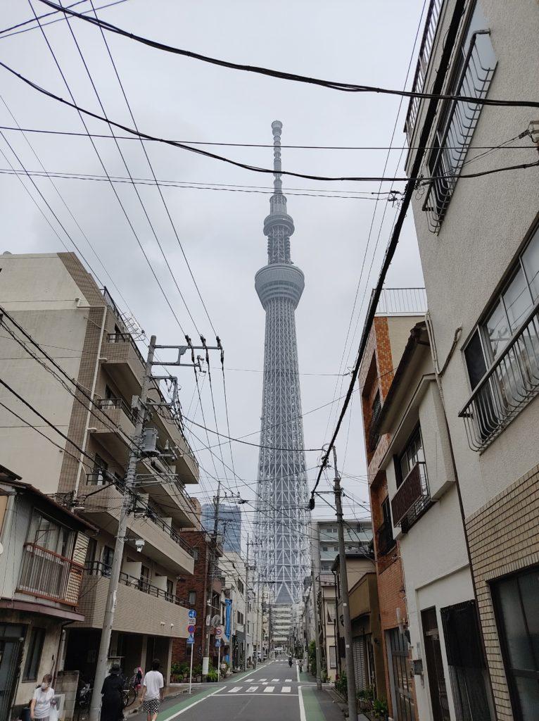 小梅牛島通りから撮影した東京スカイツリー。