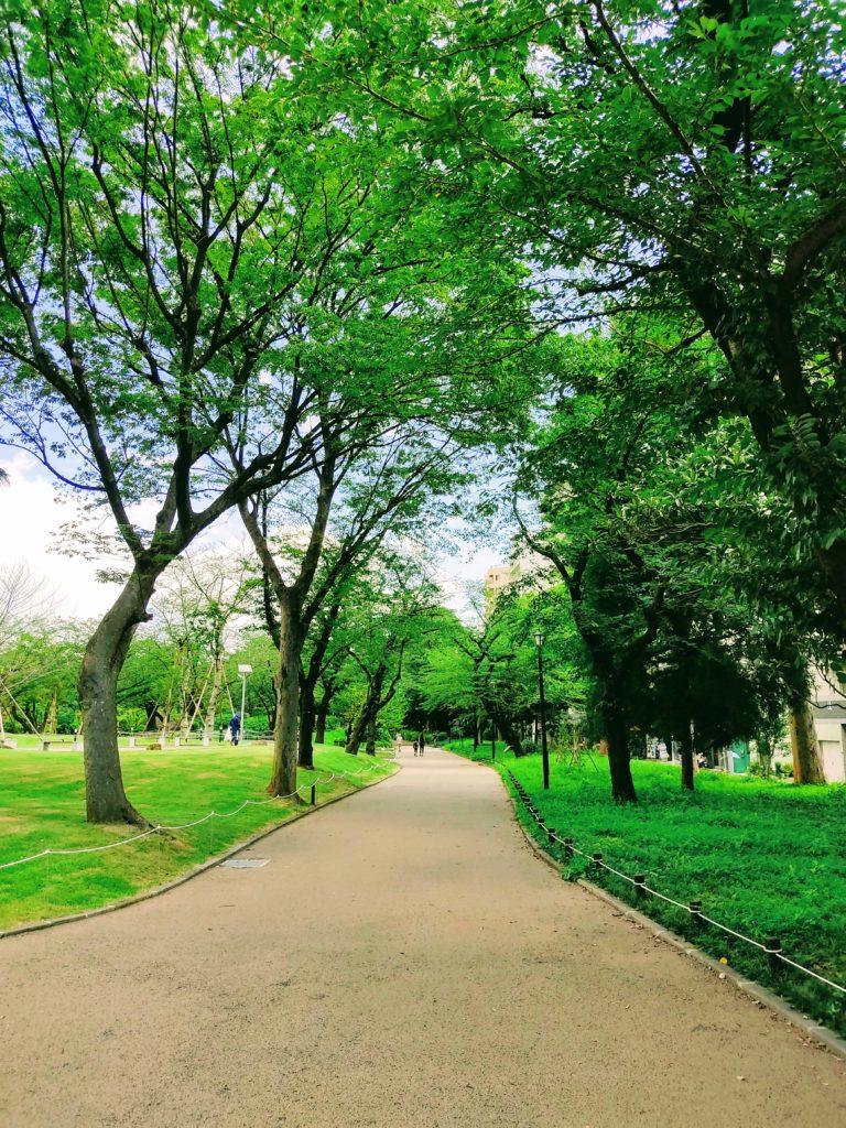 隅田公園遊歩道。