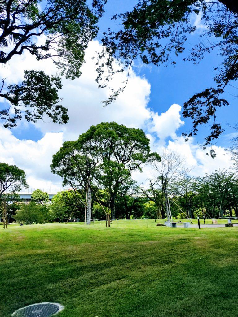隅田公園芝生広場。