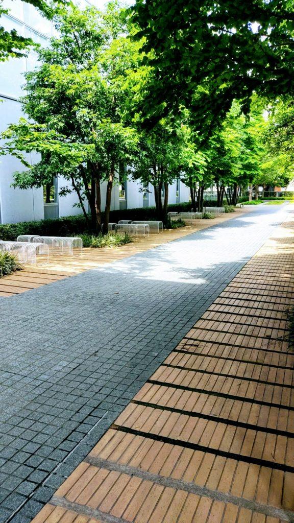 東京電機大学千住キャンパス遊歩道。