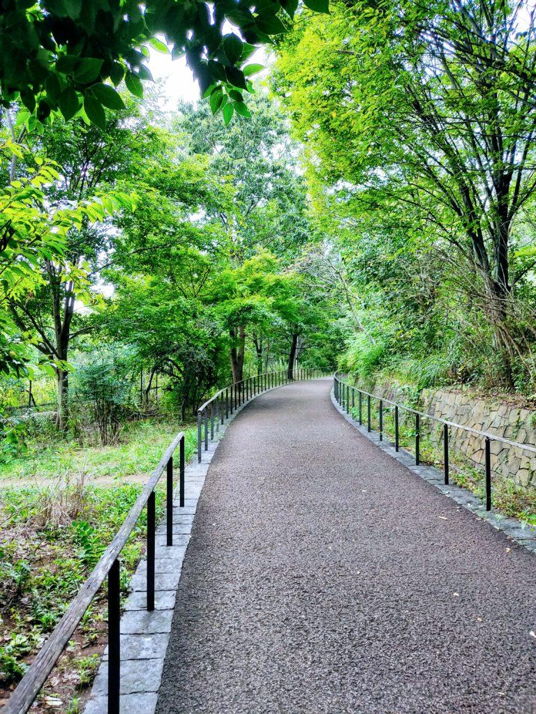 赤羽自然観察公園の遊歩道。