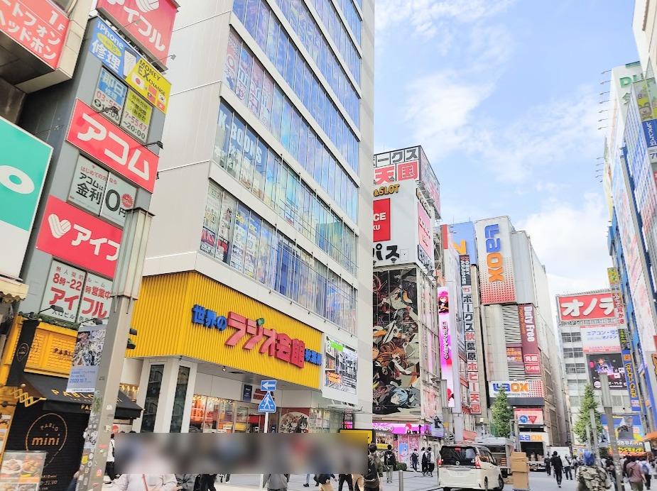 秋葉原駅電気街口周辺。