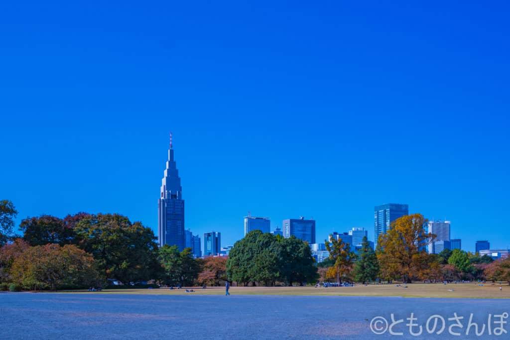 新宿御苑から見る高層ビル。