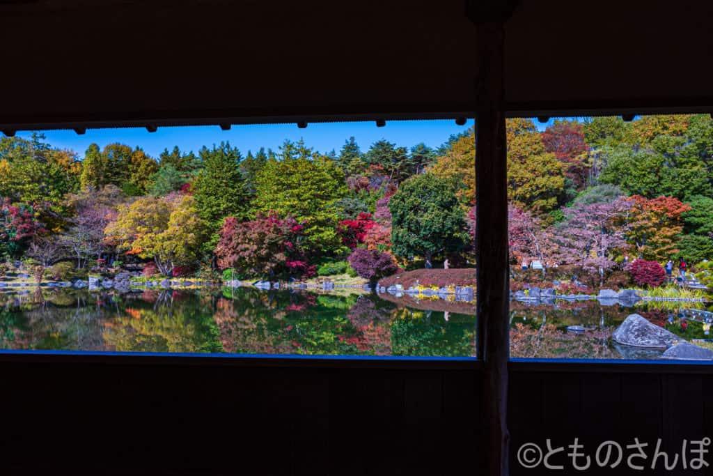 国営昭和記念公園の日本庭園。