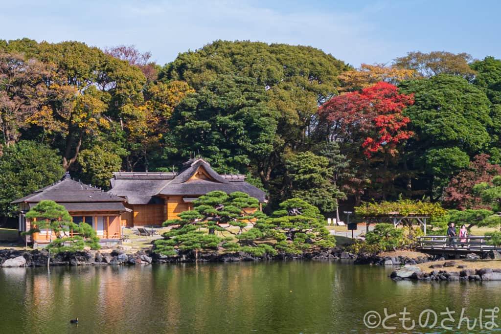 浜離宮恩賜庭園、鷹のお茶屋付近。