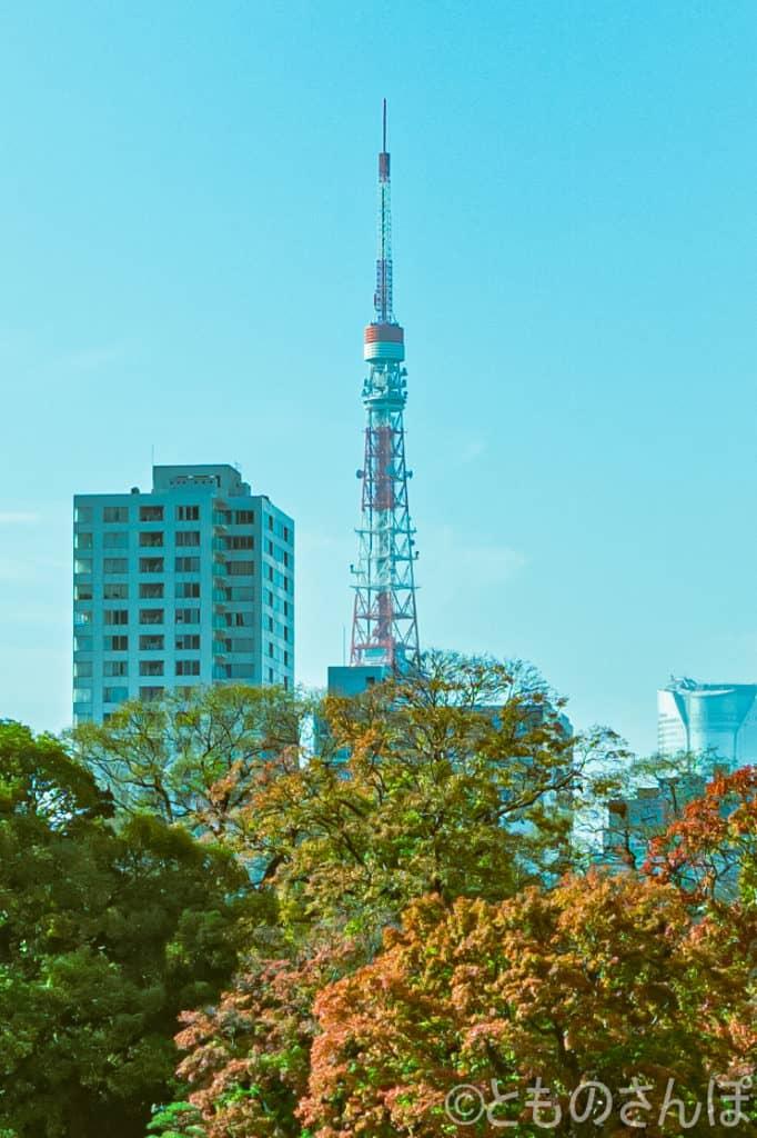 浜離宮恩賜庭園からみた東京タワー。