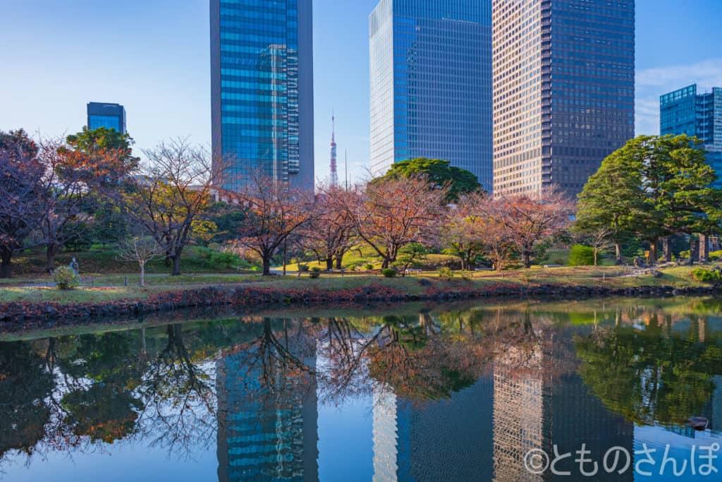 芝離宮恩賜庭園から見える東京タワー。