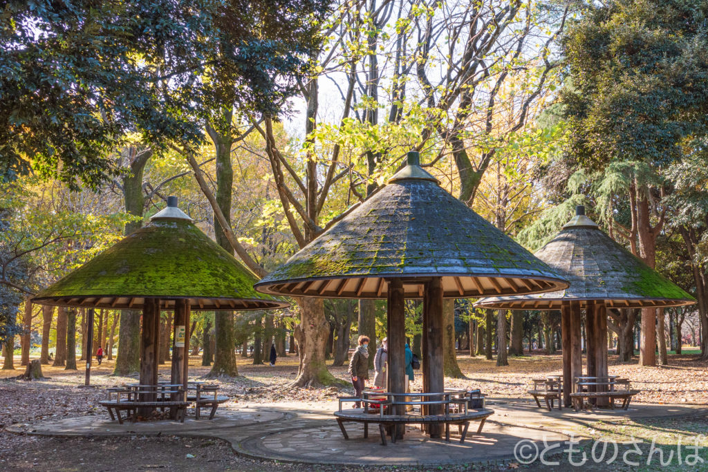 代々木公園の「三本きのこの休憩舎」。