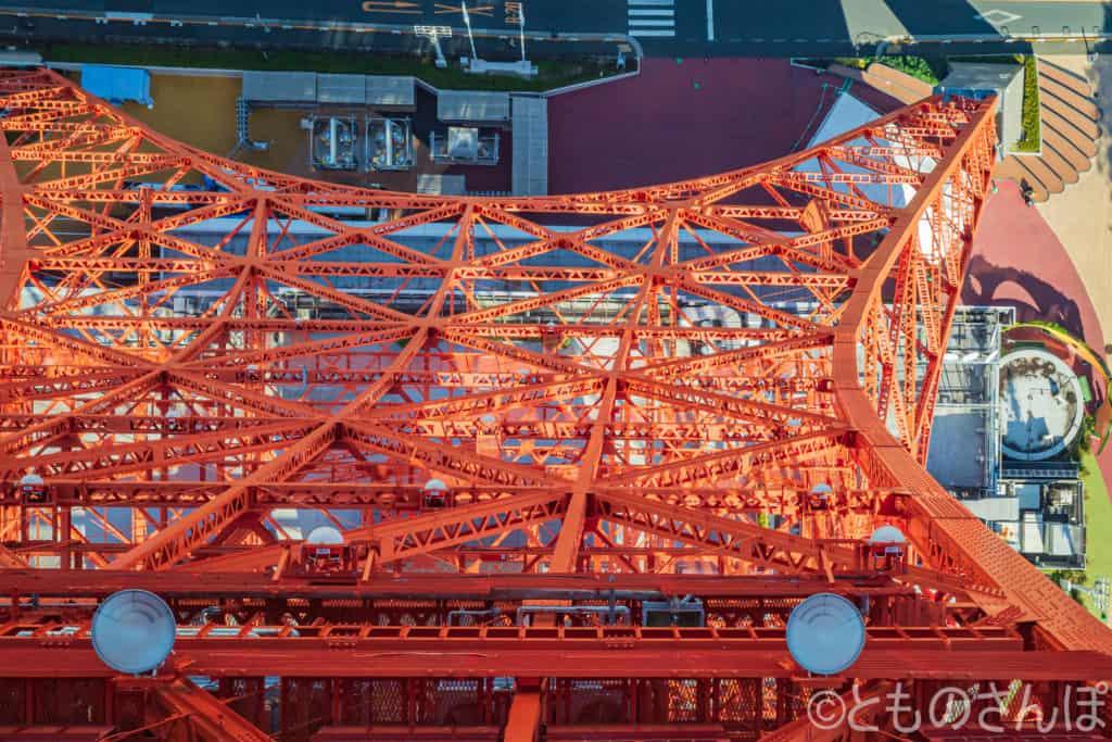 東京タワー「スカイウォークウィンドウ」。