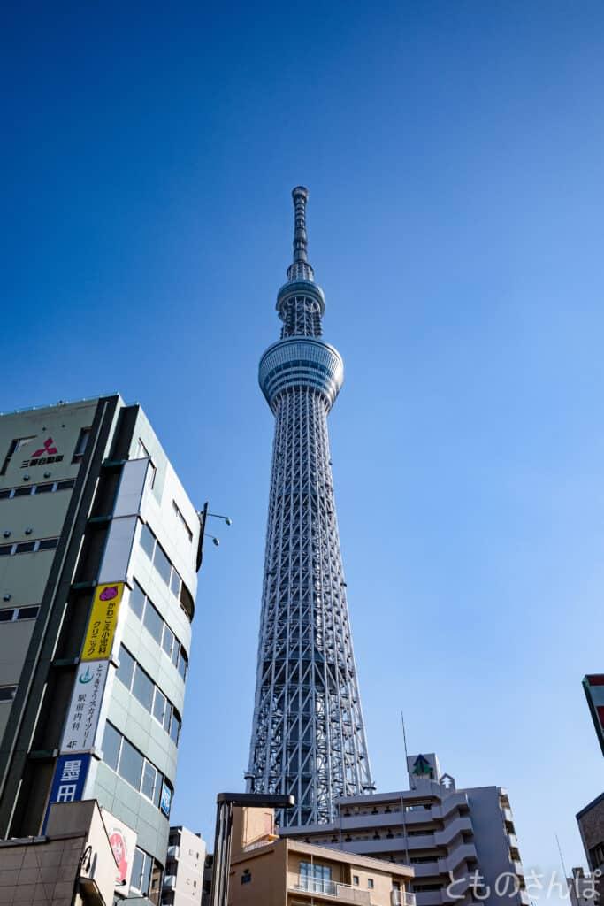 少しだけ離れた所から撮影した東京スカイツリー。