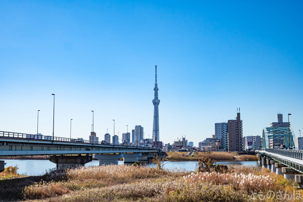 四ツ木橋から撮影した東京スカイツリー。